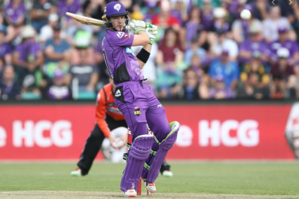 Hobart Hurricanes ink deal with Tim Paine